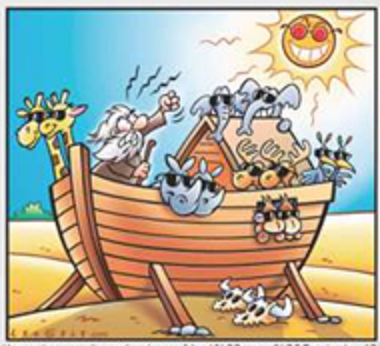 Sun and Noah