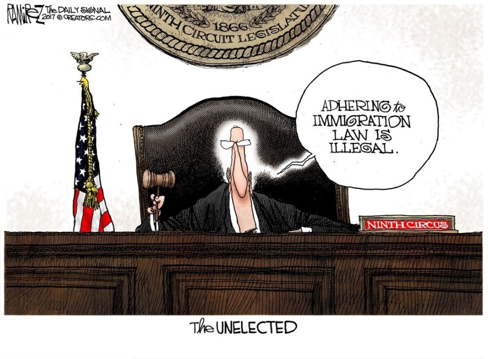 the-unelected