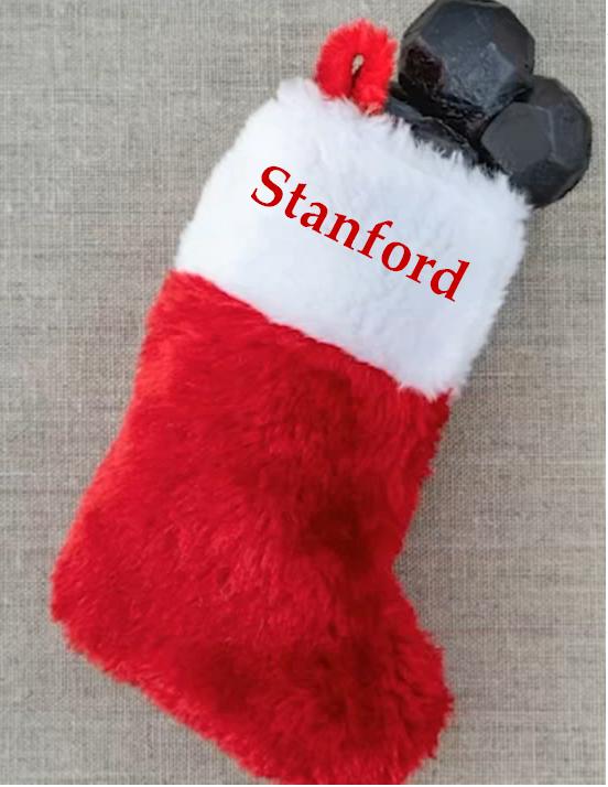 Stanford sock4