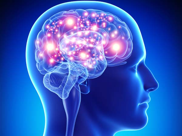 promotional-product-facts-brain