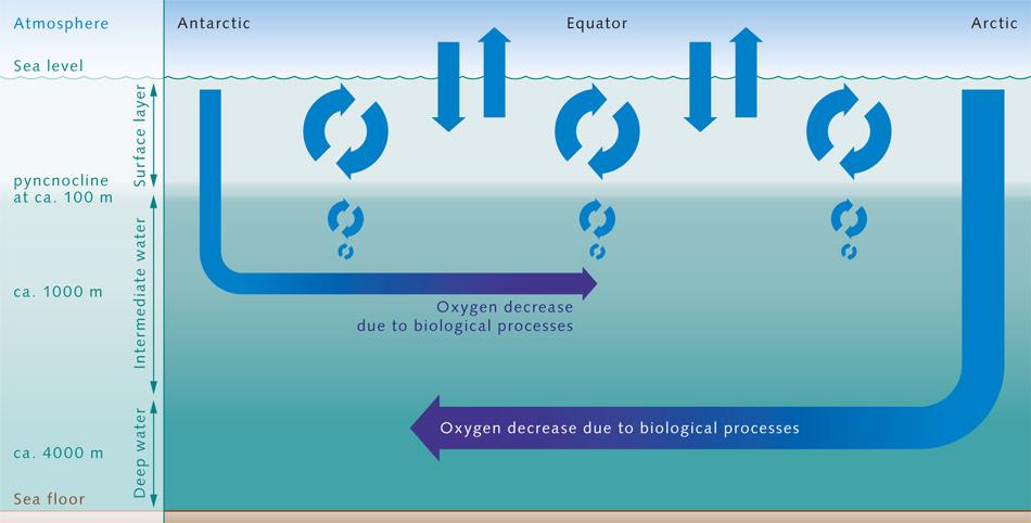 k2_g_sauerstoffmischung_meer_2_e_en