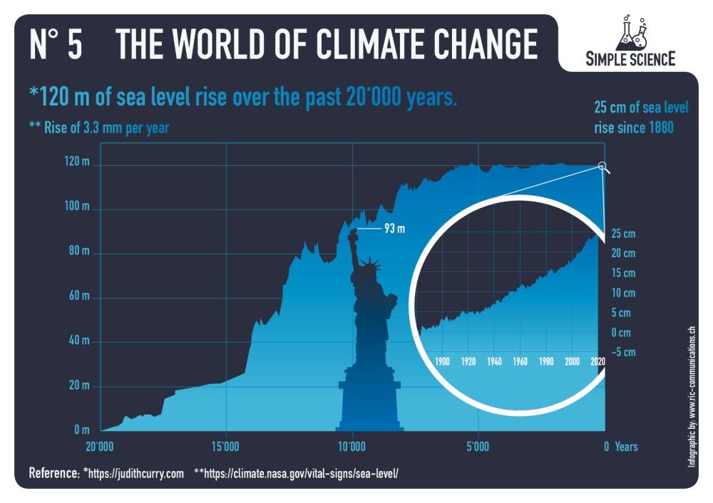 05_infographic_wocc